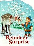 Reindeer Surprise (Mini Shaped Book)