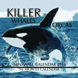 Killer Whales Orcas Mini Wall Calendar 2016: 16 Month Calendar