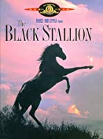 The Black Stallion [Import USA Zone 1]