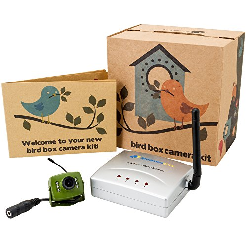 green-feathers-wireless-bird-box-camera-with-night-vision-wireless-receiver-700tvl-video-and-audio-p