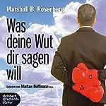 Was deine Wut dir sagen will. Überraschende Einsichten | Marshall B. Rosenberg