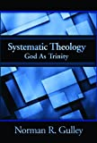 Systematic Theology: God As Trinity