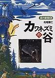 カワネズミの谷 (森の新聞)