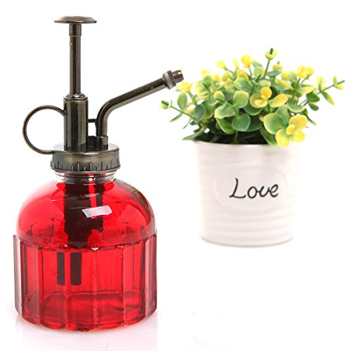 Small Red Transparent Ribbed Glass Vintage Style Plant Water Mister Spray Bottle with Top Pump - MyGift®