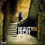 Beauty in Decay: The Art of Urban Exp...
