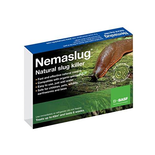 slug-nematodes-12million-treats-40sqm