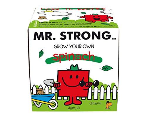 mr-men-fertilizante-multiusos-color-multicolor