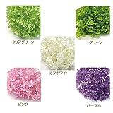 アジサイ ソフトアナベル 小分けパック プリザーブドフラワー 花材 プリザービング (オフホワイト)
