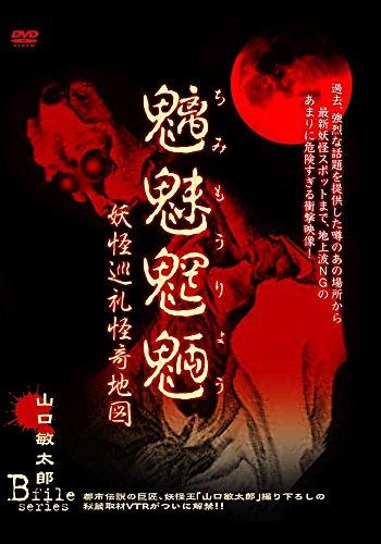 魑魅魍魎 妖怪巡礼怪奇地図 山口敏太郎 B-FILE シリーズ [DVD]