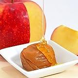 梅の一冨士 アップル梅 塩分約3% (300g)