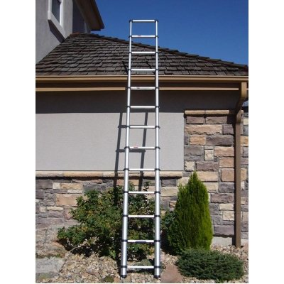 Telesteps 1600 250-Pound Duty Rating Aluminum Telescoping Extension Ladder, 12-1/2-Foot