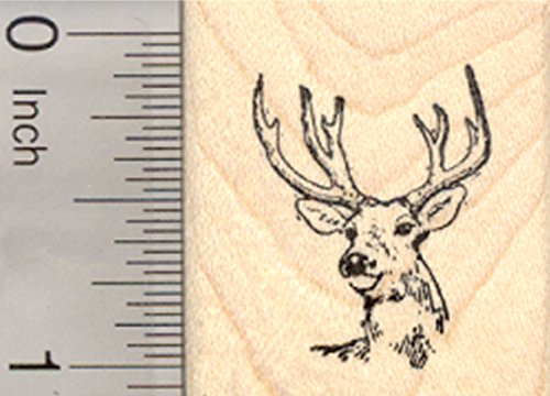 Buck Deer Wildlife Rubber Stamp, Small
