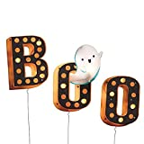 Totally Ghoul Halloween Lighted Shimmer 3pc Stake BOO Set