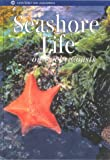 img - for Seashore Life on Rocky Coasts (Monterey Bay Aquarium Natural History Series) book / textbook / text book