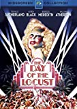 The Day Of The Locust [DVD] [1975]