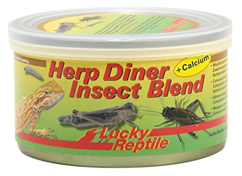 Lucky Reptile Herp Diner Insect
