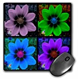 3dRose LLC 8 x 8 x 0.25 Inches Mouse Pad, Cosmos Flower Collage (mp_6009_1)