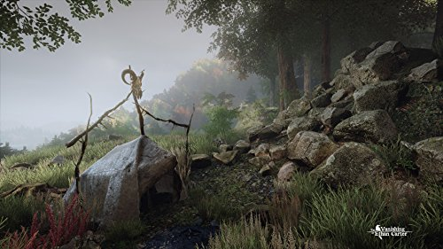 The Vanishing of Ethan Carter  galerija