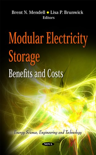 Modular Electricity Storage: Benefits & Costs (Energy Science, Engineering and Technology)