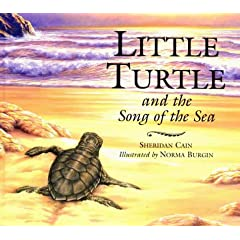 Little Turtle and the Song of the Sea