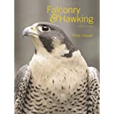 Falconry and Hawkingby Phillip Glasier