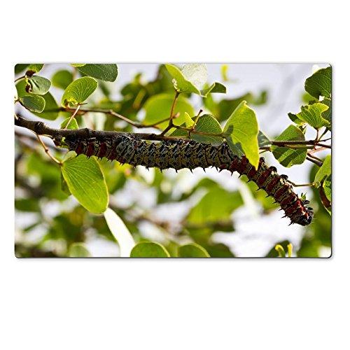 liili-premium-large-table-mat-284-x-177-x-02-inches-mopane-worm-on-leaf-colourful-eat-hang-green-foo