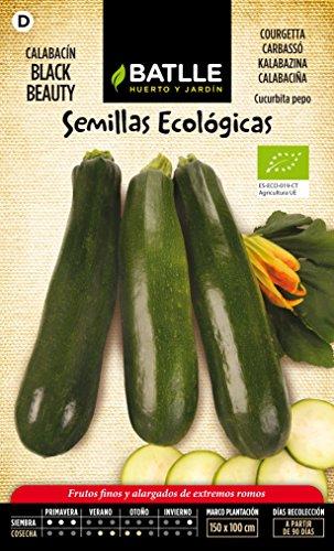 semillas-batlle-651101bols-calabacin-bellezza-negra-eco