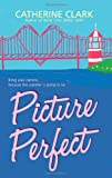 Picture Perfect (0061374970) by Clark, Catherine