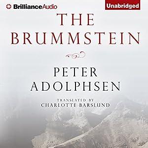 The Brummstein Audiobook