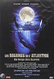 Les Baleines De L'atlantide - Au Large Des Açores