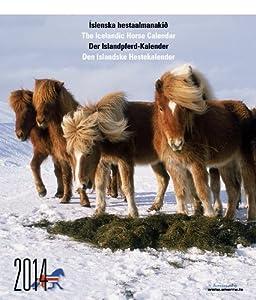 Icelandic Horse Calendar 2014