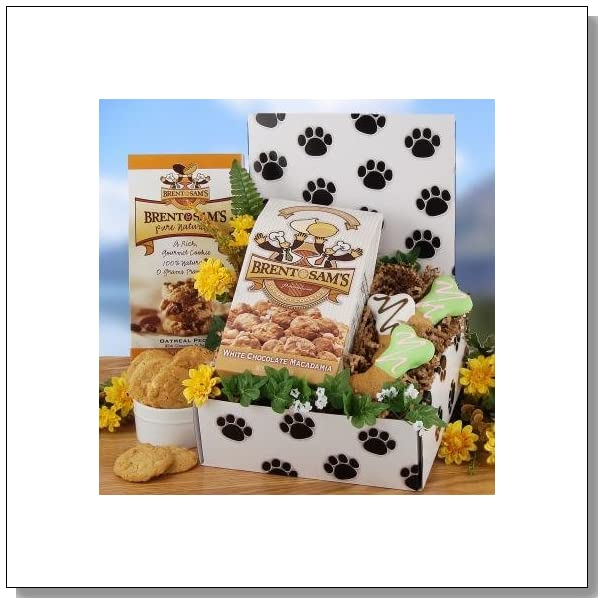 Man's Best Friend Dog Care Package