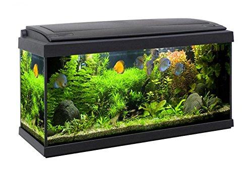 acquario-accessoriato-completo-milo-80x30-93litri