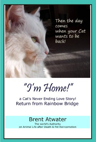 """I'm Home!"" a Cat's Never Ending Love Story- Cat Reincarnation Stories, Animal life after death, Animals Spirits, Pet life after death, Animal communication"