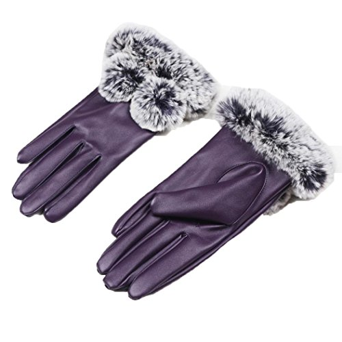 DEESEE(TM) Women Girl Luxurious PU Leather Winter Super Warm Gloves Cashmere Mittens manoplas (D) (Free Kin D compare prices)