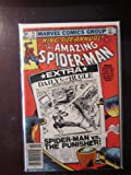 img - for The Amazing Spider-Man Annual #15 (Vol. 1) book / textbook / text book
