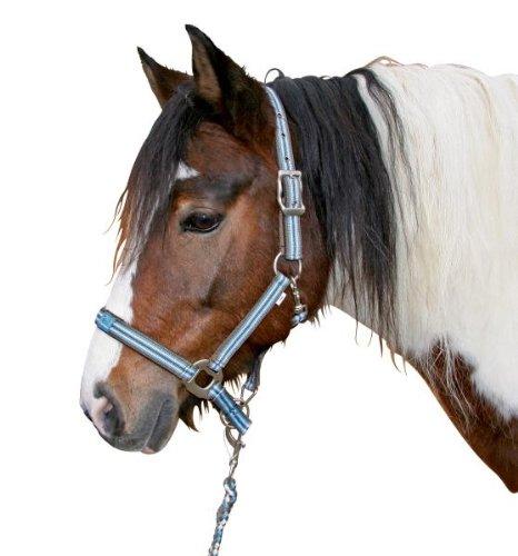 Kerbl Halfter Ponyteam Gr. 1 hellblau/braun