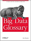 Big Data Glossary
