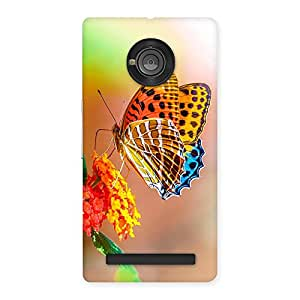 Ajay Enterprises Queen One Butterfly Back Case Cover for Yu Yuphoria