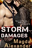 Storm Damages (English Edition)