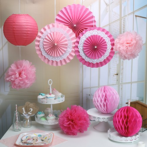 RiscaWin Set for Decoration Paper Fan,Tissue Paper Pom Poms ,Paper Lanterns,Honeycomb Balls (Set of 9) Pink (Pink Fan Decoration compare prices)