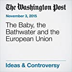 The Baby, the Bathwater and the European Union | Daniel W. Drezner