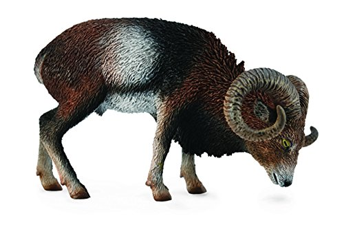 Collect A Wild Life European Mouflon Toy Figure
