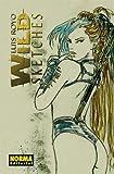 echange, troc LUIS ROYO - Wild sketches vol.3