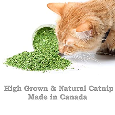 [Extra 40% OFF This Week Only] Pet Magasin Premium Canadian-Grown Fine-Grind Catnip