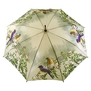 Stock-Regenschirm Apfelblüten und Finken - Rosemarie Schulz