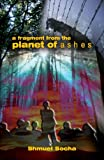 Holocaust Stories: A Fragment from the Planet of Ashes (Holocaust Books)