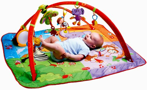 Best Review Of Tiny Love Gymini Move and Play Activity Gym, Animals
