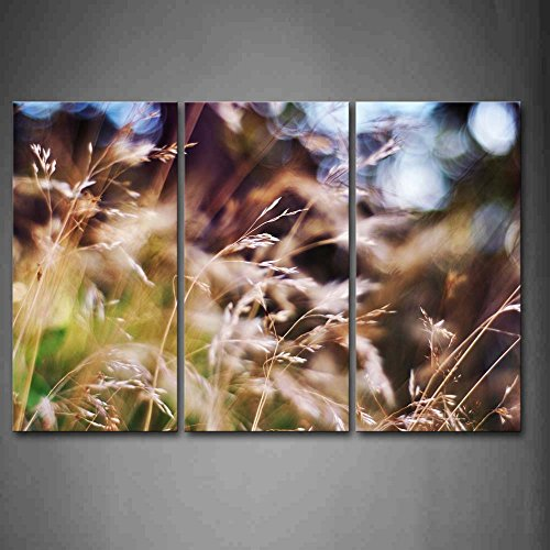 Bright Halo Above Pretty Grasses Wall Art Painting The Picture Print On Canvas Botanical Pictures For Home Decor Decoration Gift