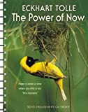 img - for Power of Now by Eckhart Tolle 2015 Engagement Calendar book / textbook / text book